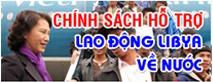 laodongvietnhat2