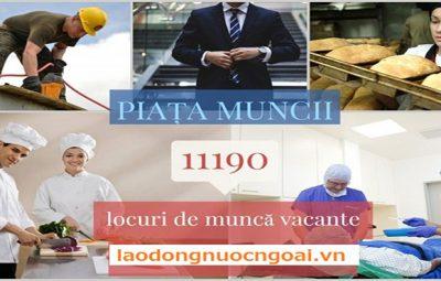 xuất khẩu lao động rumani lương được bao nhiêu